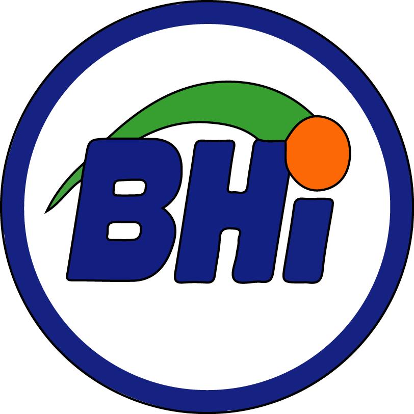 Ball Hockey International